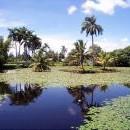 Екскурзия в Куба - 4 ден