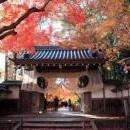 Екскурзия в Япония - 5 ден