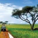 Екскурзия в Танзания - 2 ден