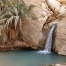 Екскурзия в Тунис - 6 ден