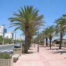 Екскурзия в Тунис - 8 ден
