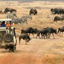 Екскурзия в Танзания - 3 ден