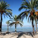Почивка на Палма де Майорка  - Палма де Майорка - Испания